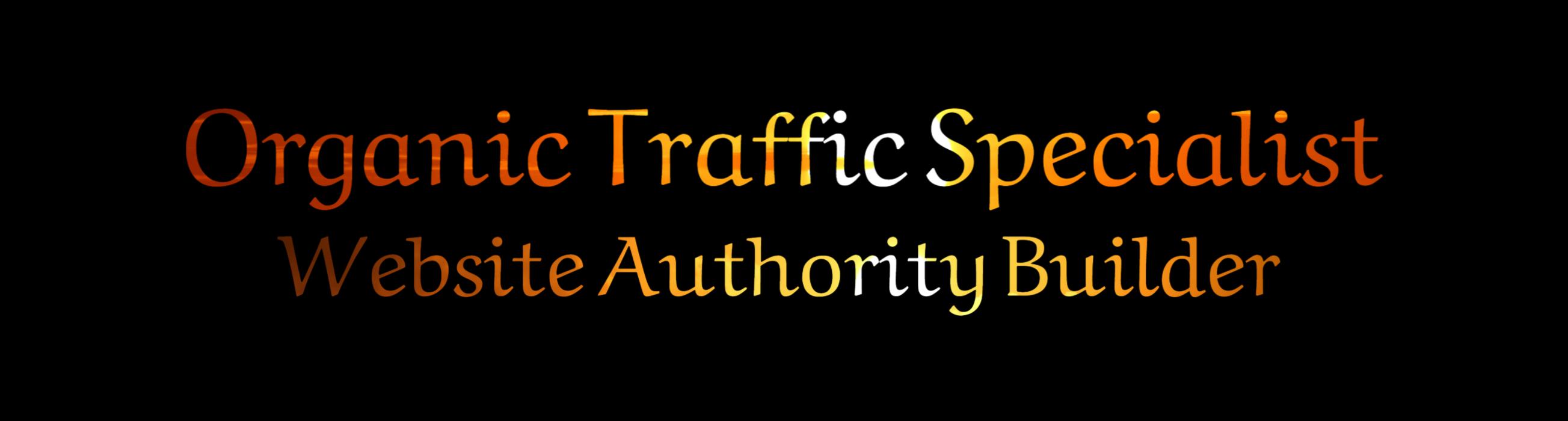 Organic Traffic Specialist and Website Authority Builder brodneil.com