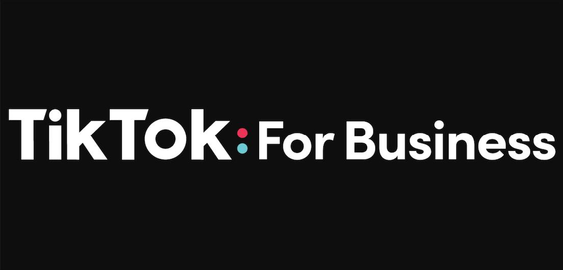 TikTok Challenges Brands to 'Don't Make Ads' 4